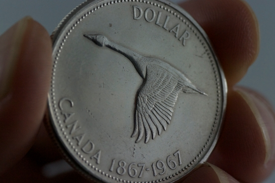 1967 Canadian Goose Dollar